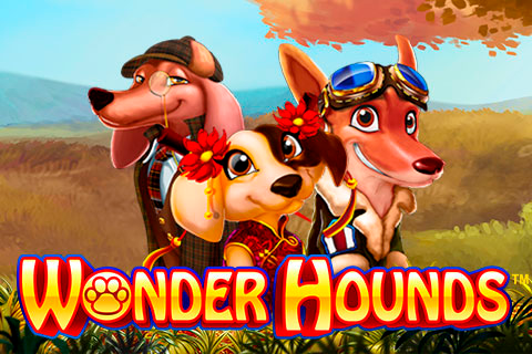 Logo wonder hounds nextgen gaming